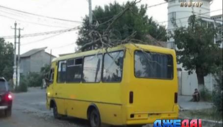 Дерево упало на автобус с пассажирами в Одессе