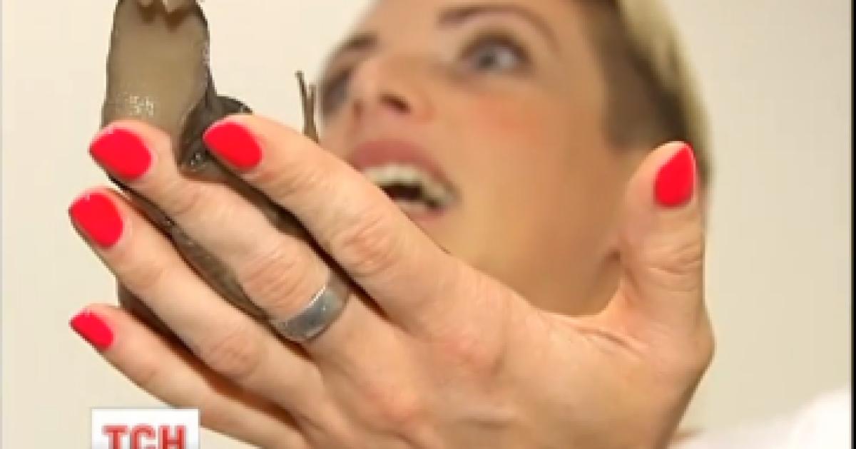 Как превратить хобби в прибыльный бизнес: массаж с улитками и квест-комнаты