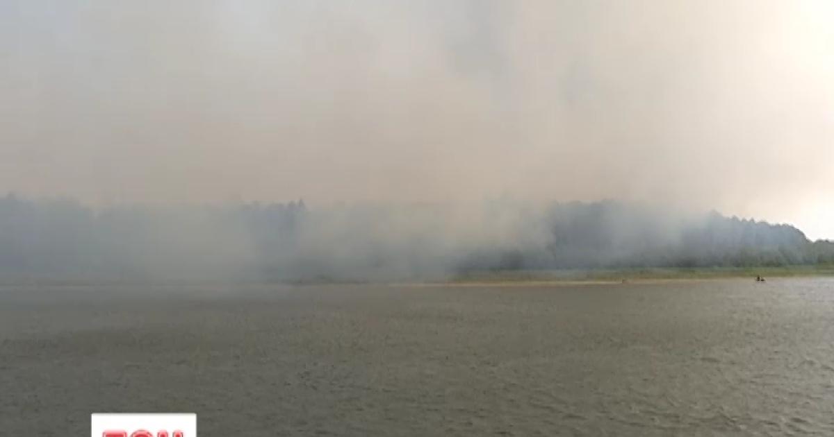 Киевщина в огне: лесные пожары перекинулись на Вышгородский район