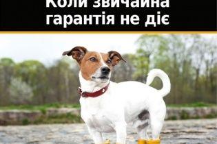 В Украине Continental предлагает интересную гарантию на шины