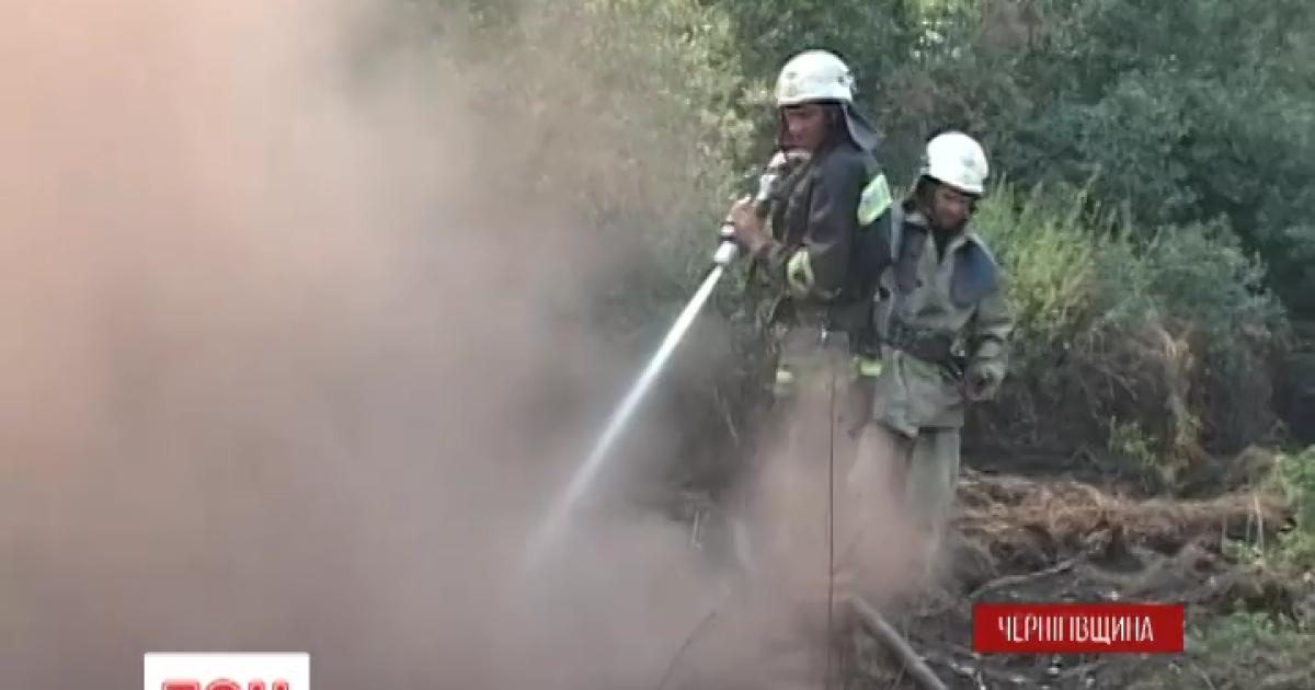 Значительную часть Украины затянуло дымом от пожаров