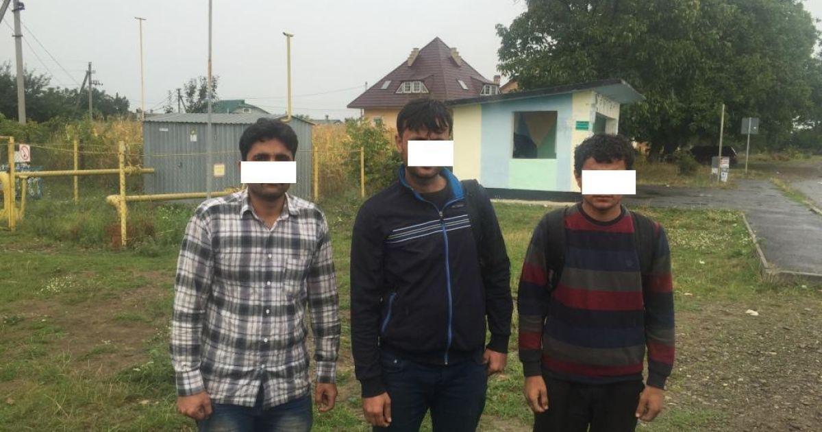 В Карпатах задержали несколько групп афганских и сирийских нелегалов