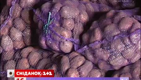 Картопля в Україні продовжує дорожчати