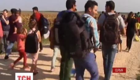 Венгерская полиция использовала против мигрантов водометы и слезоточивый газ