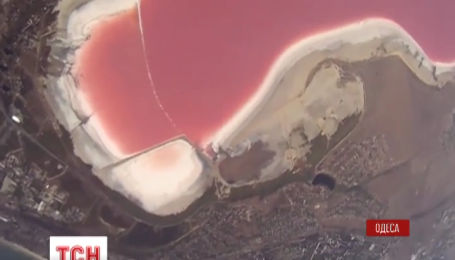 Вода у Куяльницькому лимані в останні кілька днів стала яскраво-рожевою