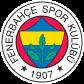 Эмблема ФК «Фенербахче Стамбул»