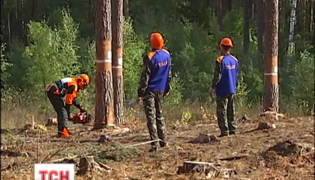 Сегодня на Киевщине свое мастерство демонстрировали лесорубы со всей страны