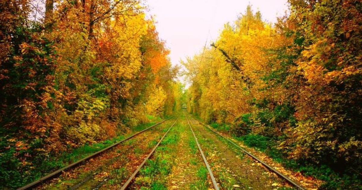 Праздничная среда в Украине будет солнечная и теплая