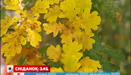 Завтра по всей территории Украины температура начнет падать