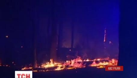 В австралійському штаті Вікторія вирують лісові пожежі