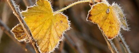 Заморозки та невеликий дощ. Прогноз погоди в Україні на 22 вересня