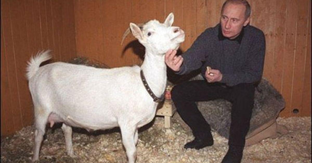 Тим, хто проголосував на виборах президента РФ в окупованому Севастополі, видають пам'ятну медаль - Цензор.НЕТ 7665