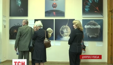 У Дніпропетровську відкрилася виставка німецьких вчених на межі науки та мистецтва