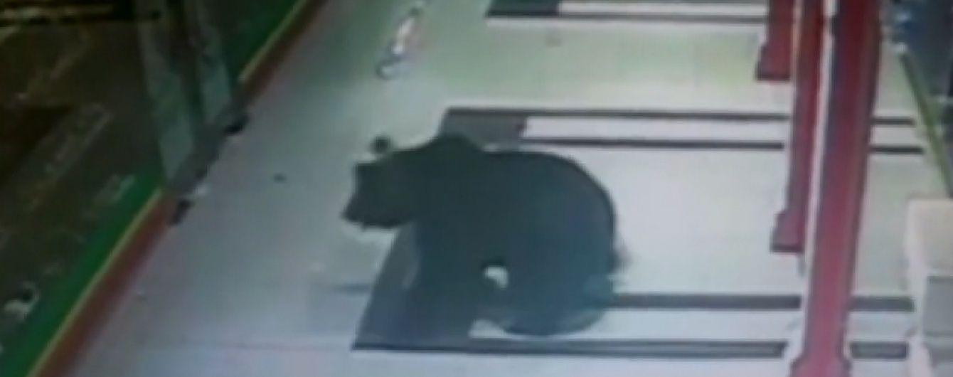Медведь ворвался в торговый центр в российском Хабаровске