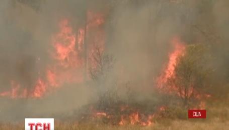 Сотни жителей американского штата Техас были эвакуированы из-за масштабного лесного пожара