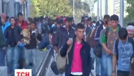 Венгрия завершила строительство стены на границе с Хорватией