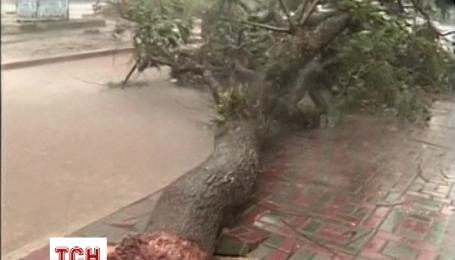Из-за тайфуна Коппу на Филиппинах пострадали более 180 тысяч человек