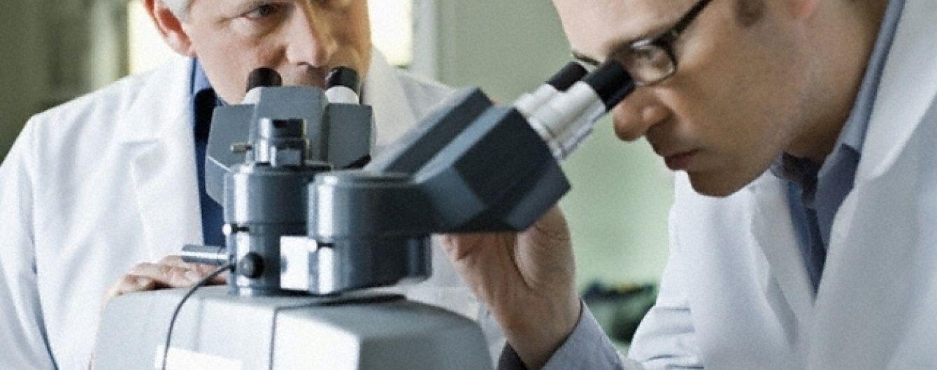 Вченим вперше вдалося виростити в лабораторії двотижневий людський ембріон