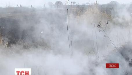 Площадь возгорания торфяников в Киевской области сокращается благодаря дождю и работе пожарных