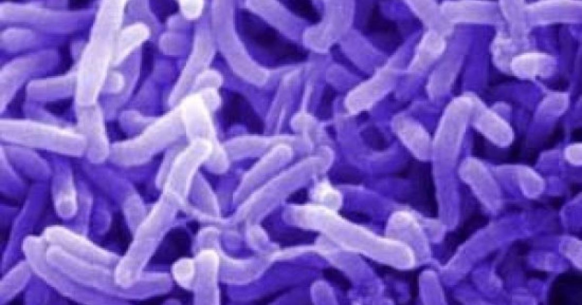 У Танзанії понад півсотні людей померли від холери