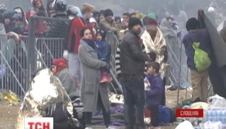 Тысячи мигрантов застряли в Словении