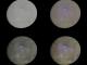 NASA показало тисячі вражаючих знімків Церери