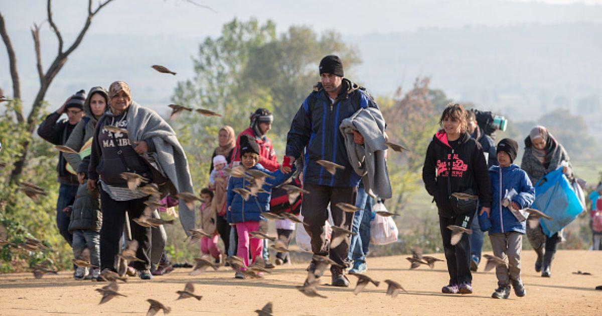 Мигранты ищут лучшей жизни