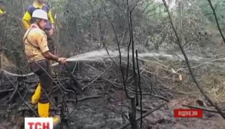 Вже 19 людей стали жертвами лісових пожеж в Індонезії