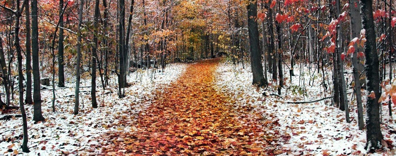 Два дні до зими. Якою буде погода наприкінці листопада та на початку грудня
