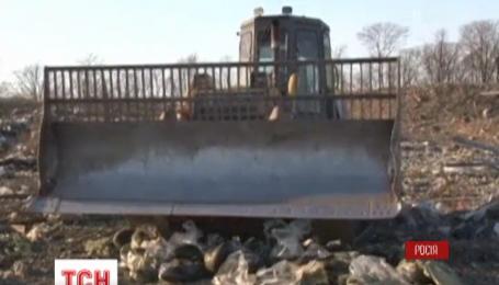 У Хабаровському краї знищили 511 кілограмів контрабандної чорної ікри