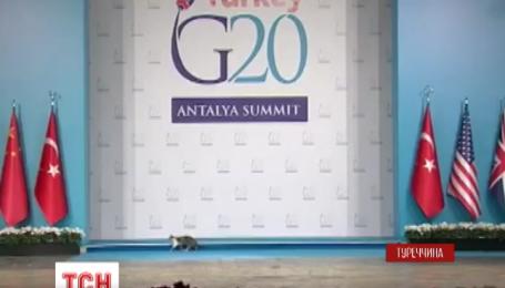 Посилені заходи безпеки не захистили саміт G20 від непрошених гостей