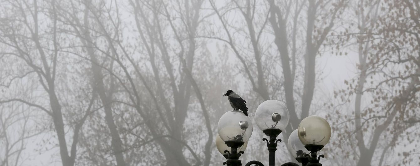 Погода в Україні на четвер: дощі, густі тумани та плюсова температура