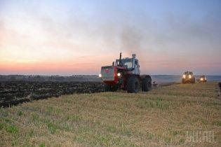 Аграрии бьют тревогу: из-за засухи не взошли 40% посевов озимых