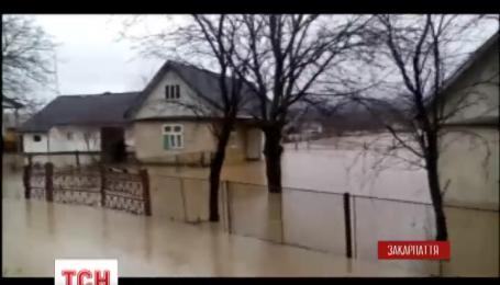 Высокая вода в Закарпатье наделала беды