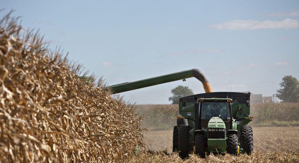 Житниця Європи: експерти пророкують Україні рекордний експорт продуктів до ЄС