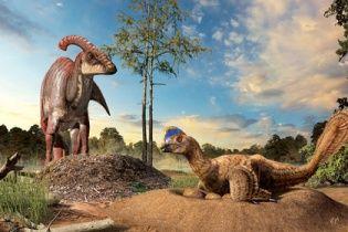У Шотландії знайшли сліди великих рослиноїдних динозаврів