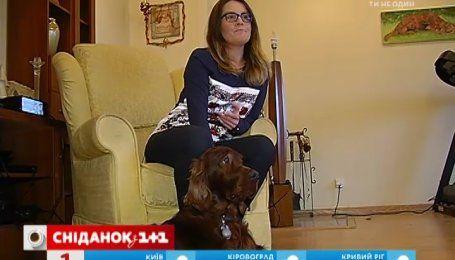 В Украине начали массово травить бездомных собак