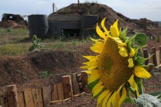 В Одесской области мужчина украл семен подсолнечника на миллион гривен