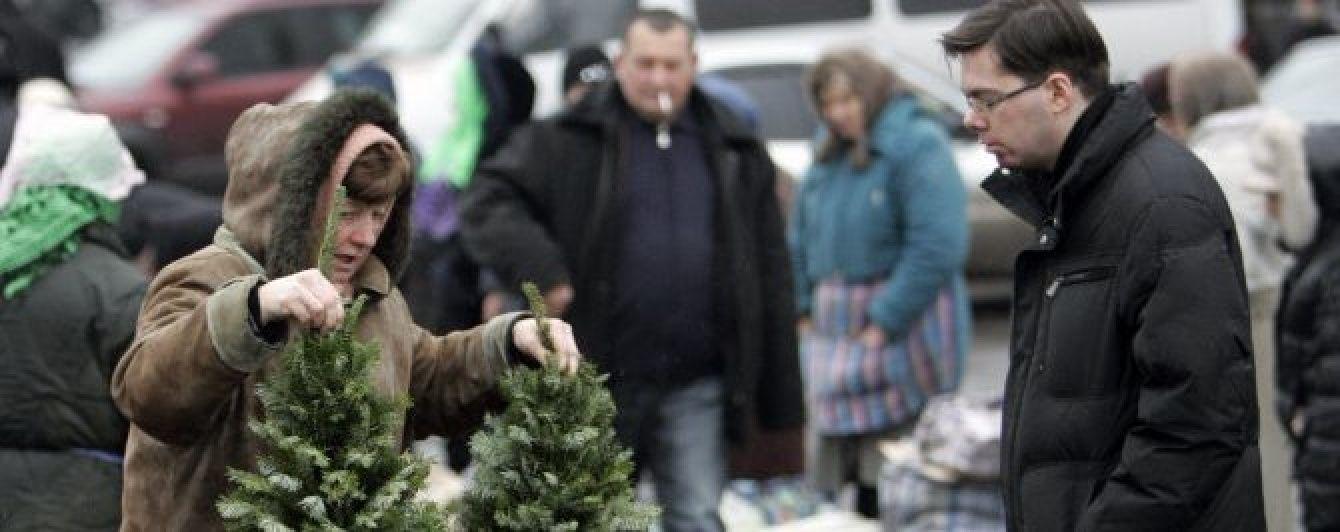 Останні економічні новини України: скільки коштують новорічні ялинки та ціни на пальне