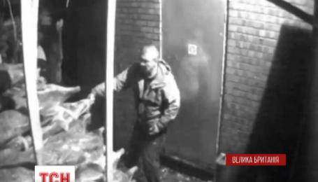 Двоє злодюжок винесли 190 ялинок із маленької сімейної крамниці поблизу Манчестеру