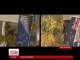 Нова Зеландія вибрала новий дизайн свого державного прапора