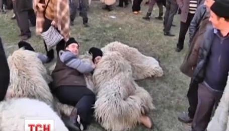Тысячи румынских пастухов прорвались в парламент