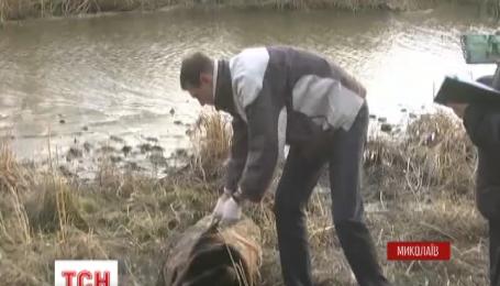 У річці Інгул у Миколаєві виловили тіло громадянина Туреччини