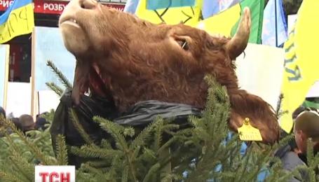 Під Раду аграрії принесли коров'ячі голови
