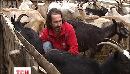 Как мужчину от депрессии и несчастной любви козы вылечили