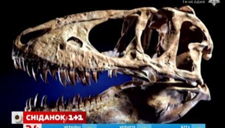 Николас Кейдж отдал Монголии череп тиранозавра из своей коллекции
