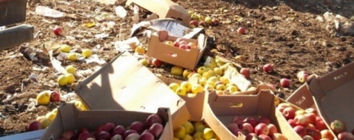 У Росії знищили 57 тонн білоруських фруктів