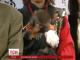У Японії відбулася офіційна церемонія передачі року