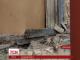 Бойовики із окупованої Горлівки підійшли до українських позицій і відкрили вогонь