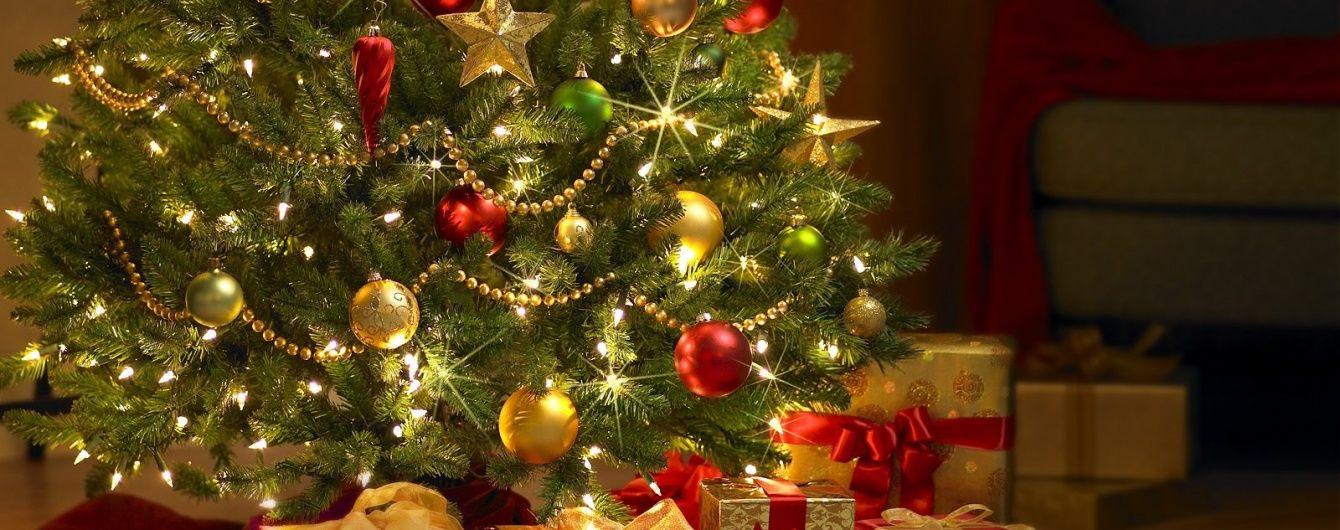 фото новогодней елки гиф счету артистки